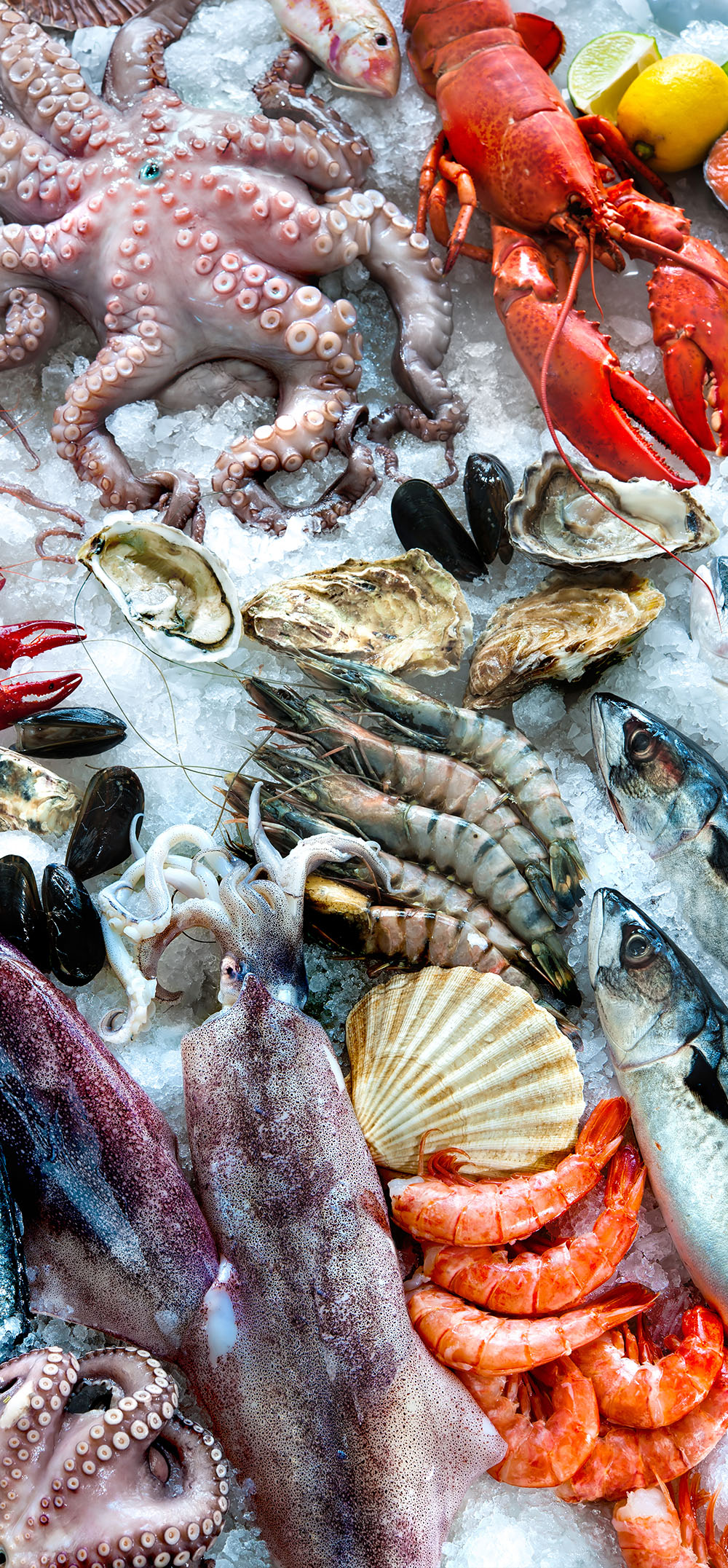 DAILY FISH & SEAFOOD SELECTION